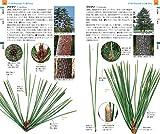 山溪ハンディ図鑑 14 増補改訂 樹木の葉 実物スキャンで見分ける1300種類 画像