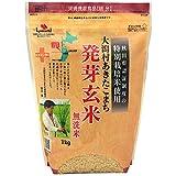 特別栽培米 大潟村あきたこまち 発芽玄米鉄分 1kg