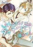 おしかけダッチワイフ 4 (BOYS FAN)