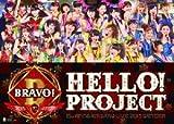 Hello!Project誕生15周年記念ライブ2013冬〜ブラボー!〜