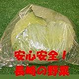 九州 長崎県産 農産物直売所 販売用 キャベツ