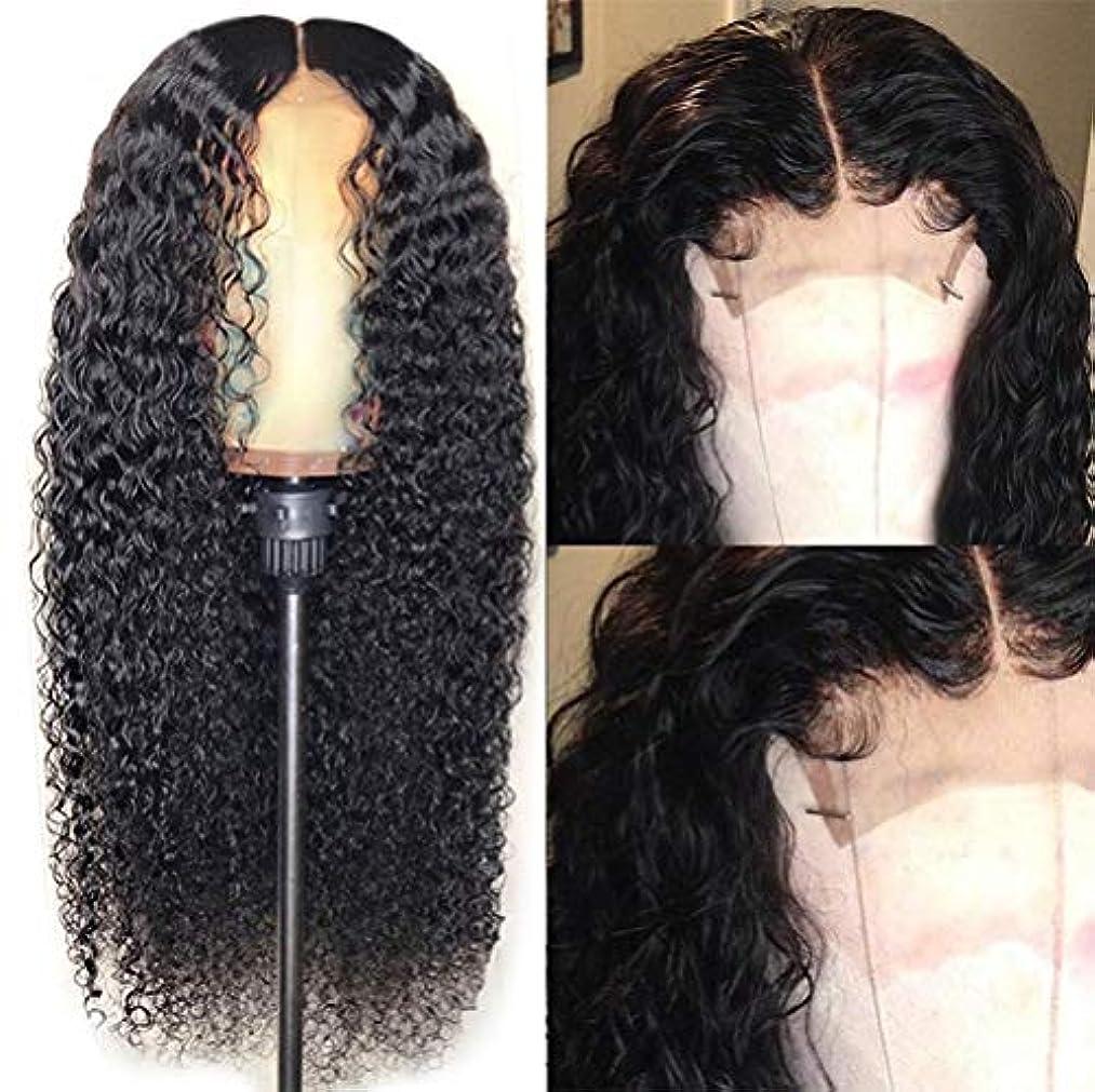 死傷者対応する地域の女性かつらブラジル毛髪フロントレース合成フルウィッグ耐熱毛カーリー130%密度ウィッグ