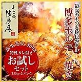 ホルモン焼き(国産和牛小腸)500g(250g×2袋)セット/ホルモン/焼肉