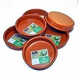 スペイン製 テラコッタ 陶器製 カスエラ 土鍋 14cm 1人用 プロ用 オーブン 直火可 アヒージョ鍋 Graupera (6枚セット)