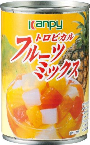 カンピー トロピカルフルーツミックス 缶225g