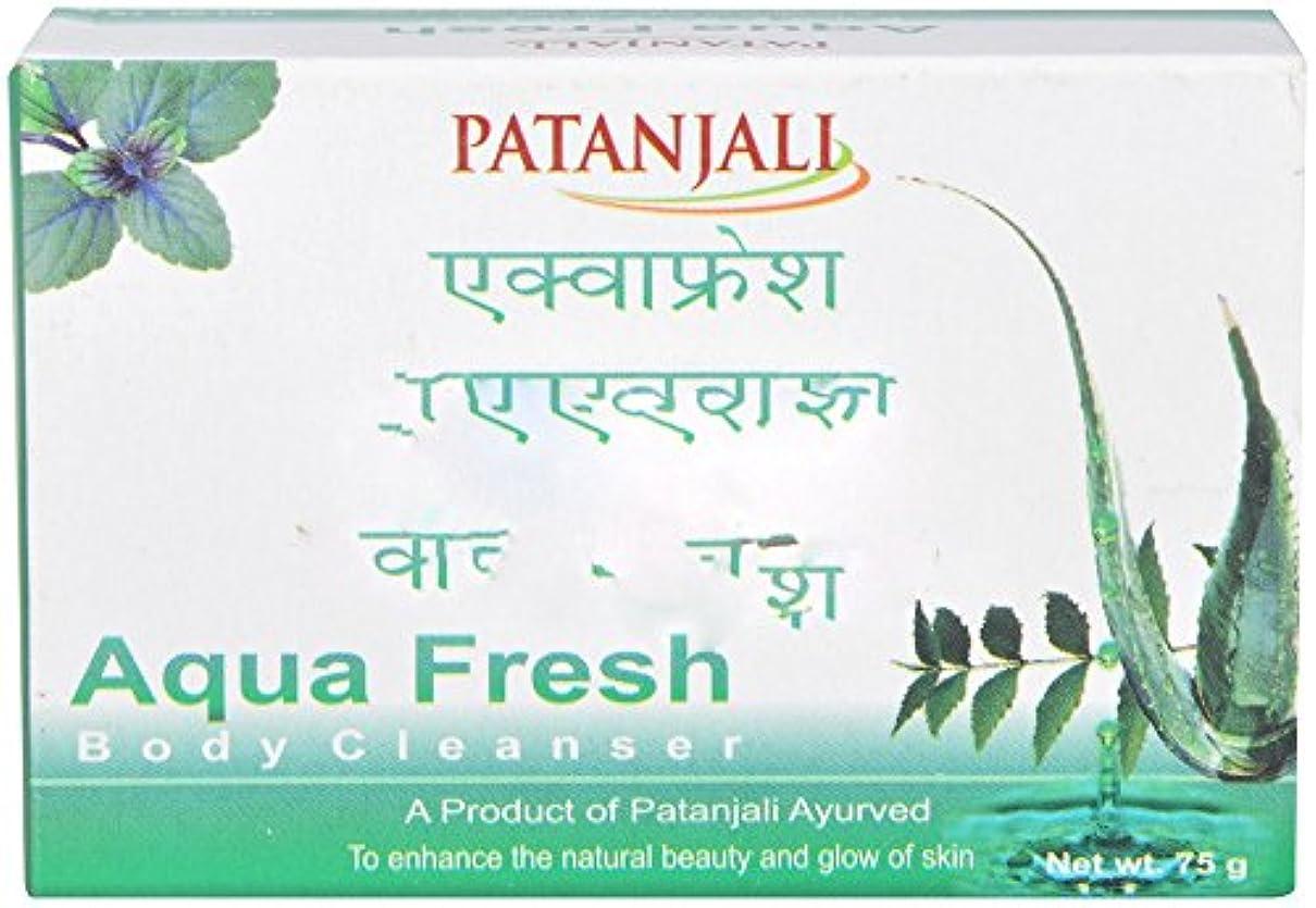 部分的クリア政令Patanjali Aquafresh Body Cleanser, 75g