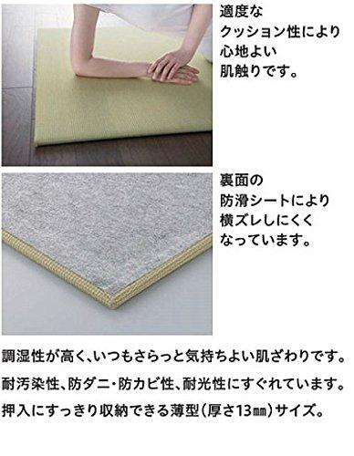https://images-fe.ssl-images-amazon.com/images/I/51P0bMmG9hL.jpg