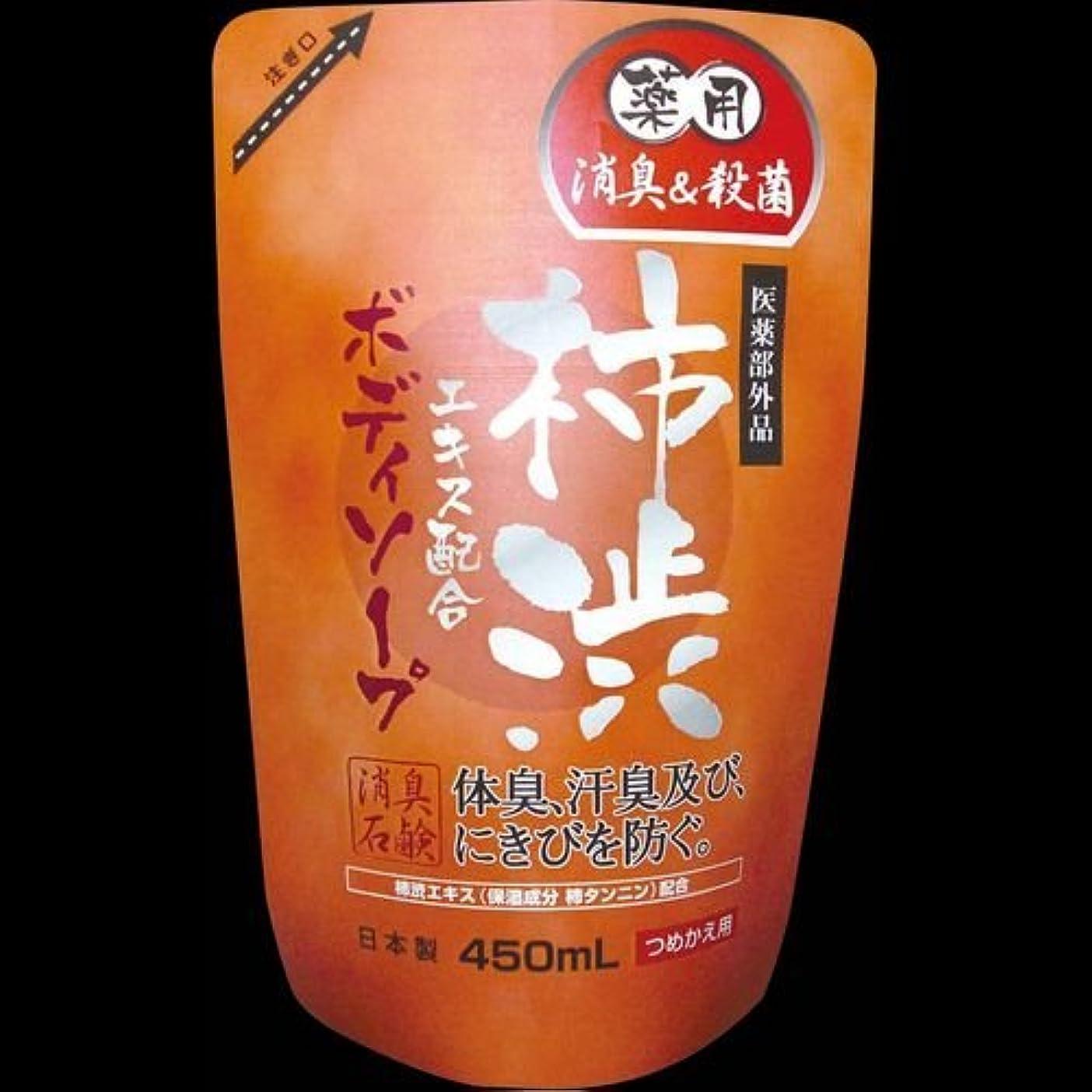 すみませんバルーン症状【まとめ買い】薬用柿渋ボディソープつめかえ ×2セット