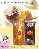 出産内祝い・お祝い返し 大自然の恵みチーズケーキ2本 名前/写真/入りカード付