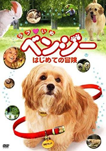ラブ・いぬベンジー はじめての冒険 [DVD]