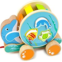 By-Imagination Generation 幼児 女の子 玩具 木製 不思議の国の海 パール ソーター 男の子 屋内 子供 おもちゃのプレイセット