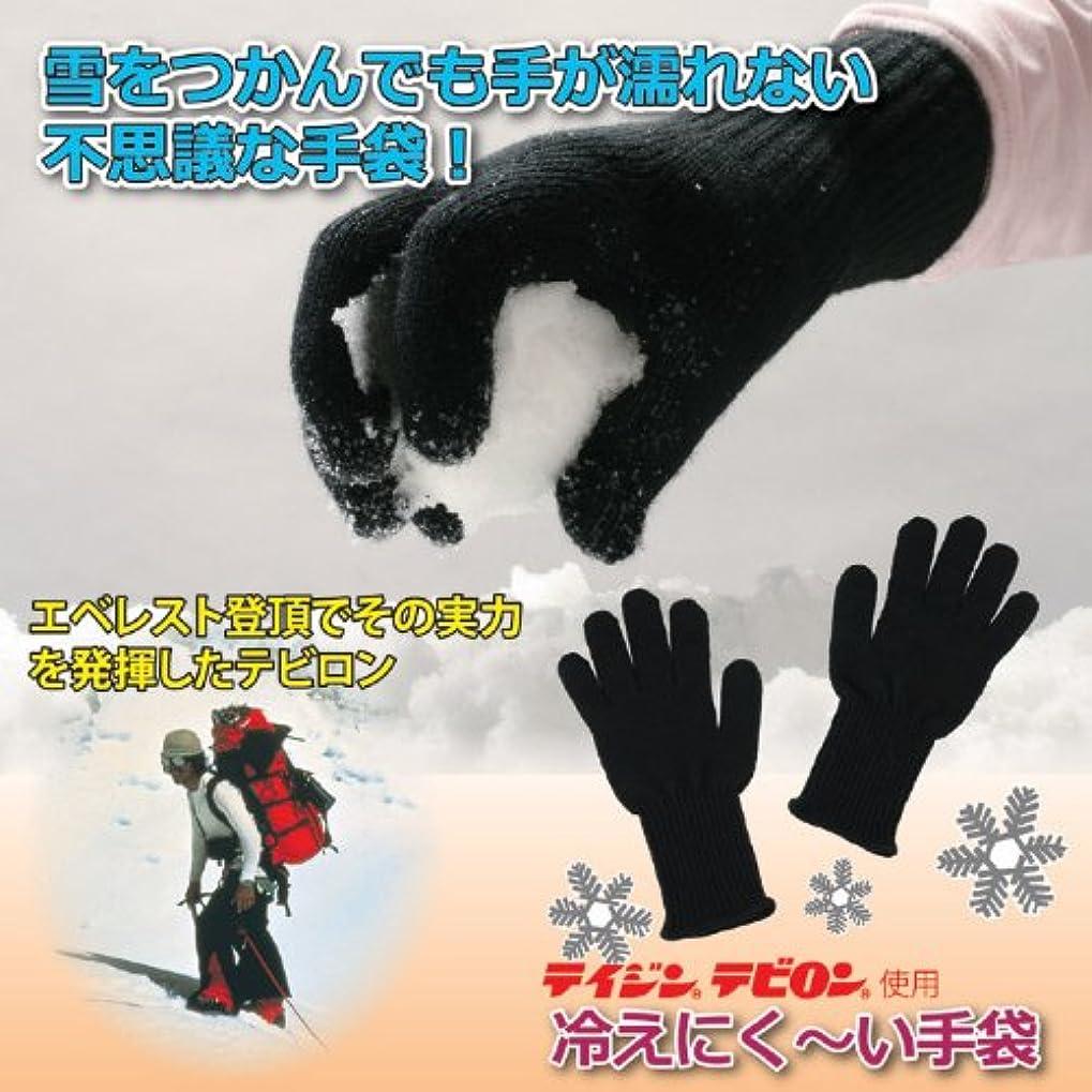 気分が悪い胚置き場テイジンテビロン 冷えにく~い手袋 (Mサイズ)