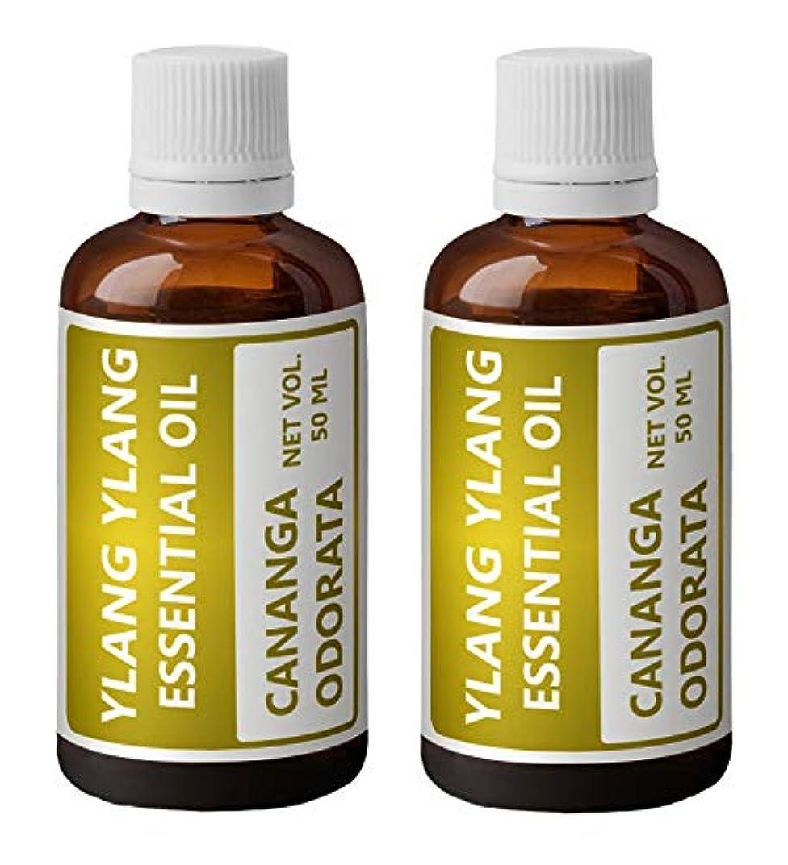 訴える消毒する鑑定Heilen Biopharmイランイランエッセンシャルオイル(Cananga Odorata) (100ミリリットル)
