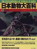 昆虫〈3〉 (日本動物大百科) 画像