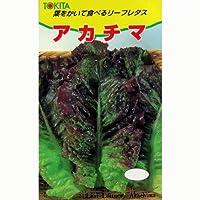 レタス 種 アカチマ 小袋(約2ml)