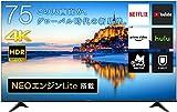 ハイセンス 75V型 4Kチューナー内蔵 液晶 テレビ 75A6G ネット動画対応 ADSパネル 3年保証 2021年モデル