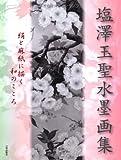 塩澤玉聖水墨画集―絹と麻紙に描く和のこころ