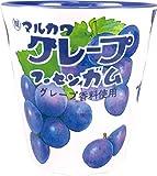 ティーズファクトリー メラミンカップ お菓子シリーズ マルカワフーセンガム グレープ 250ml
