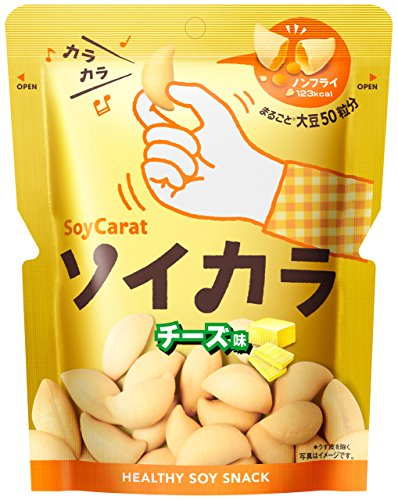 大塚製薬 ソイカラ チーズ味 27g×6袋