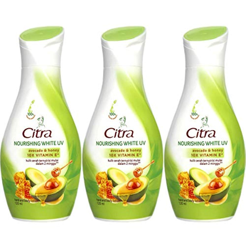 Citra チトラ Hand and Body Lotion ハンドボディローション アボカド&ハニー 120ml×3本セット [海外直送品]