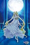 1000ピース ジグソーパズル 美少女戦士セーラームーンCrystal Princess Serenity(50x75cm)
