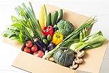 JA全農ひろしま とれたて元気市の「広島県産 野菜BOX」 8品入り
