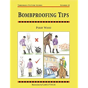 Bombproofing Tips: Threshold Picture Guide 49 (Threshold Picture Guides)