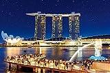 1000ピース ジグソーパズル スターライトシンガポール 【光るパズル】(50x75cm)