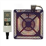 山善(YAMAZEN) こたつ用取替ヒーターユニット(600W) 速暖ヒーター 「速暖ボタン」・省エネ「ECOボタン」付 YHF-HD601E