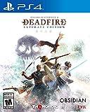 Pillars of Eternity II: Deadfire (輸入版:北米) - PS4