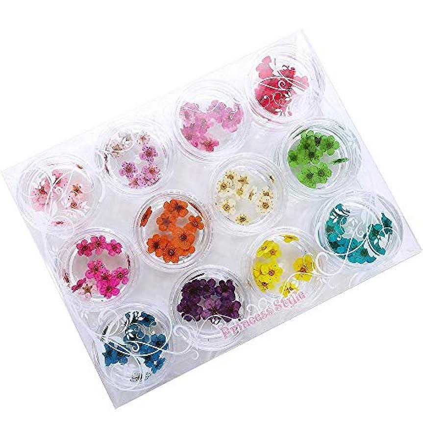プラス通行料金シャードライフラワー 上質 押し花 こでまり ネイル パーツ レジン 封入 120枚ケース入 12色×各10枚