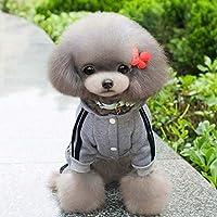 グレー、S:チワワXS-XXLのための秋の冬のペットのスポーツセーター犬服のコートパーカー服