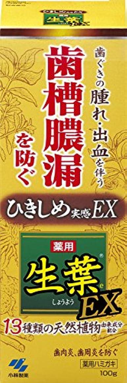 軸分析的葬儀生葉EX(しょうようEX) 歯槽膿漏を防ぐ 薬用ハミガキ ハーブミント味 100g 【医薬部外品】