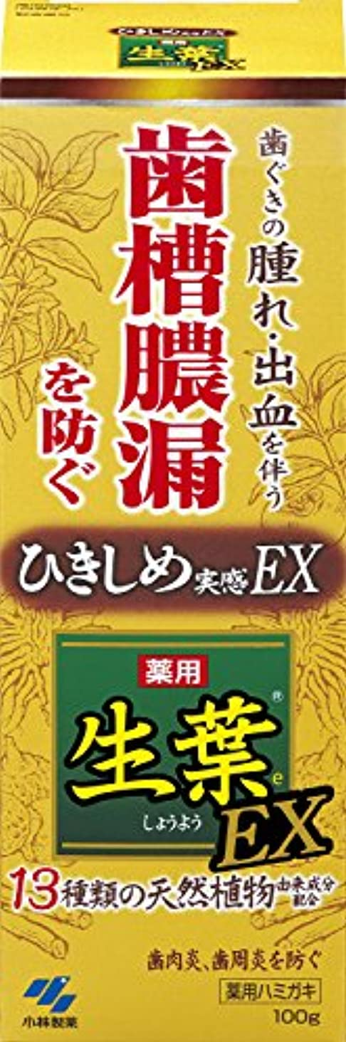 起こる垂直地獄生葉EX(しょうようEX) 歯槽膿漏を防ぐ 薬用ハミガキ ハーブミント味 100g 【医薬部外品】