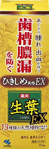 小林製薬 生葉EX 100g