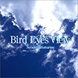 Bird Eyes View: Acoustic Asturias