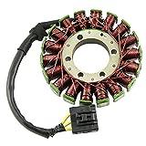 GZYF バイク用 ステーターコイル ジェネレーター 発電機 コイル 大容量 (対応車種:ホンダ CBR1000RR 04-07年)