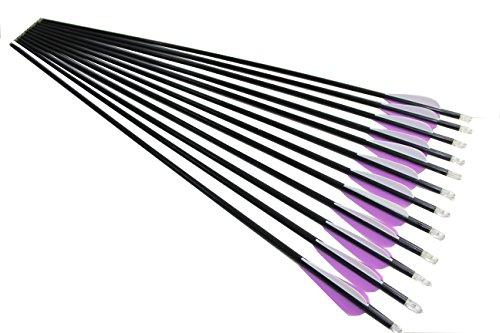 弓具12本 33インチ ファイバーグラス製矢 2つ色矢羽根 ターゲット練習矢 交換可能矢尻 F2PWT6