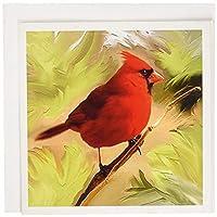 鳥–Red Cardinal–グリーティングカード Set of 6 Greeting Cards