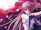 恋する乙女と守護の楯 ~薔薇の聖母~【予約特典&Amazon.co.jpオリジナル特典付き】