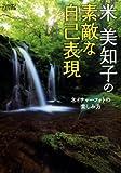 フォトコン別冊 米美知子の素敵な自己表現 2013年 11月号 [雑誌] 画像