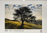 Alberi - simboli della vita 2020 - Edizione Bianca - Timokrates calendari da parete, calendari fotografici - DIN A3 (42 x 30 cm)