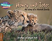 Honey and Toto: The Story of a Cheetah Family 1 Pathfinders (Cambridge Reading Adventures)