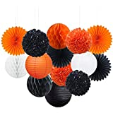 Sorive Party Decorations Kit - 14pcs Paper Tissue Honeycomb Balls Lanterns Paper Pom Poms Flowers Hanging Fan for Halloween Bridal Baby Shower Birthday Wedding School Graduation (Orange Black White)