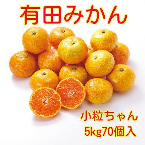 RoomClip商品情報 - 和歌山県産 有田 みかん 小粒ちゃん 2Sサイズ 5kg 約70個入 ご家庭用