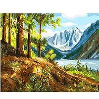 デジタル絵画を描く 家の装飾の山および小川のキャンバスの絵画油絵デジタル壁の装飾diy絵画40x50cm(16x20in)フレームレス