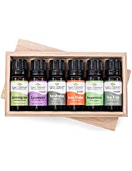 Plant Therapy Essential Oils (プラントセラピー エッセンシャルオイル) トップ6 エッセンシャルオイル お試しセット