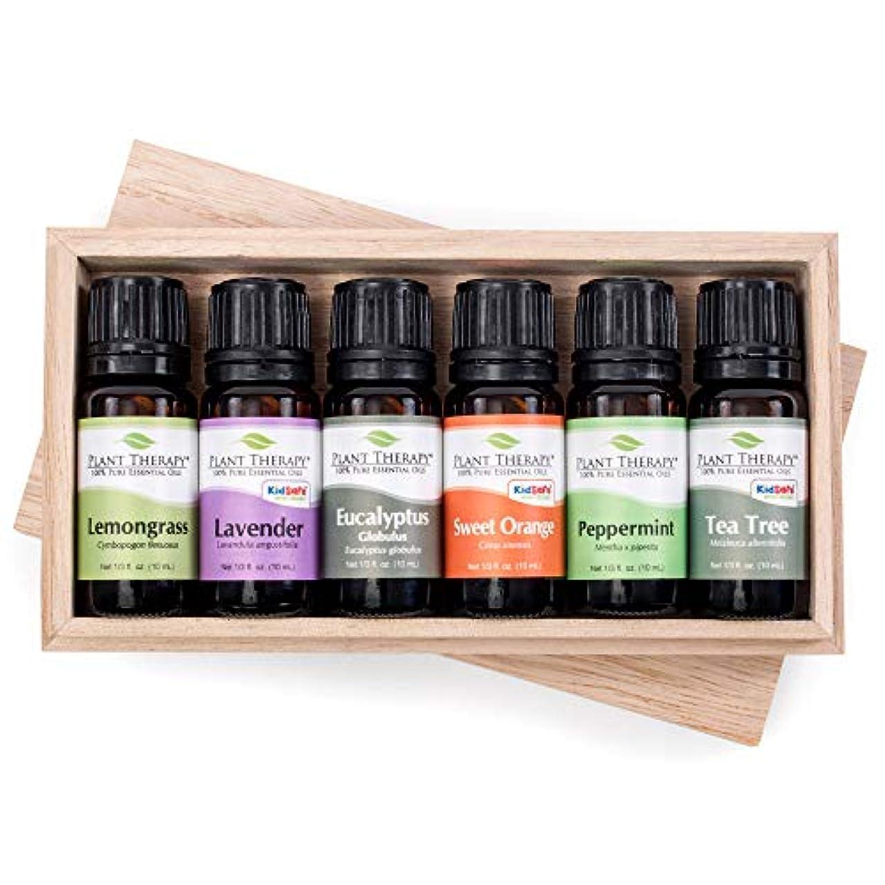 ラジエーター派生する遅れPlant Therapy Essential Oils (プラントセラピー エッセンシャルオイル) トップ6 エッセンシャルオイル お試しセット