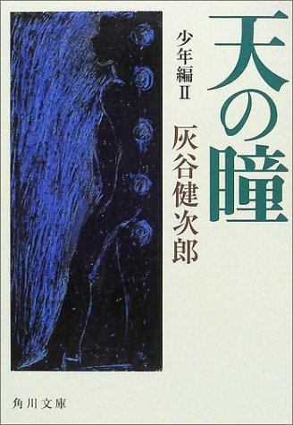天の瞳 少年編〈2〉 (角川文庫)の詳細を見る