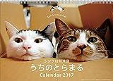 シンクロ姉妹猫うちのとらまる カレンダー 【2017年版】 17CL-0378